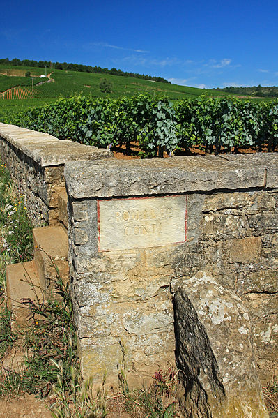 The Romanée Conti vineyard. Photo courtesy of Wikimedia Commons. Photographed by Andrea Schaffer.
