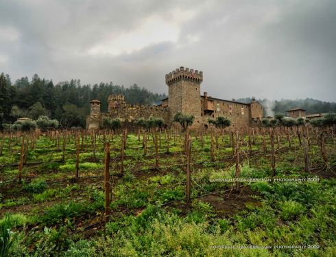 A view of the castle from the vineyard. Photo courtesy of Liza Gershman Photography.
