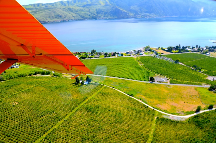A bird's-eye-view of Lake Chelan and area vineyards.