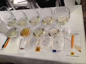 Verdejo_Wine